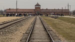 Auschwitz Blog Pic-1
