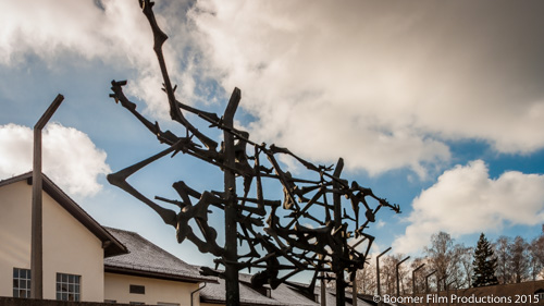 Private Dachau Tour pic 8